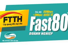 FTTH Fast 80Mb