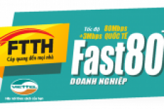 FTTH Fast 80Mb plus